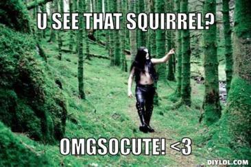 black-metal-forest-meme-generator-u-see-that-squirrel-omgsocute-3-cd5c82