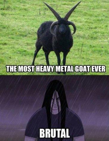 Funny-Heavy-Metal-MEME-Jokes-2014