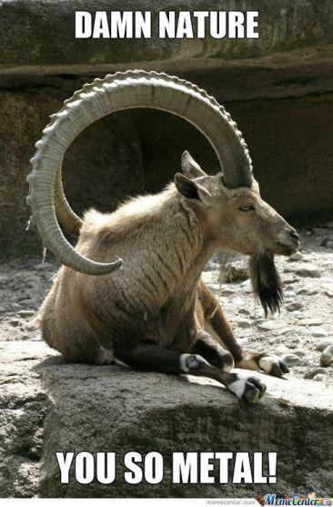 heavy_metal_goat