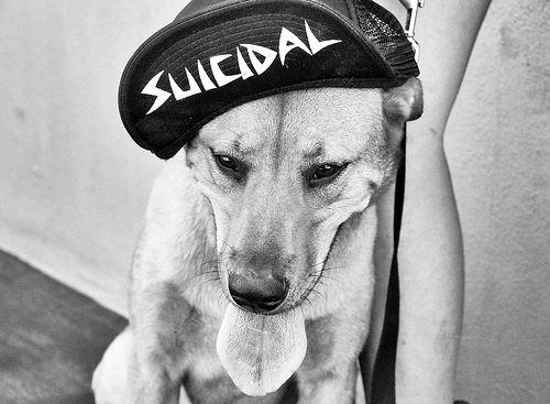 suicidal-hat