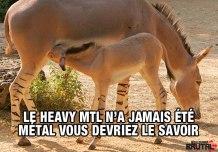 heavymtl-non-metal