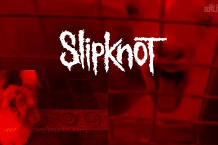 Voici la meilleure reprise de SLIPKNOT… par desanimaux