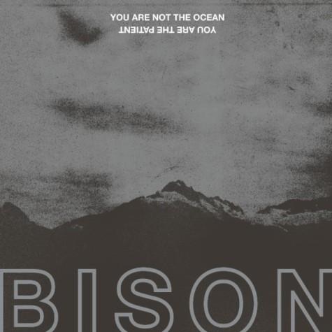 bison metal
