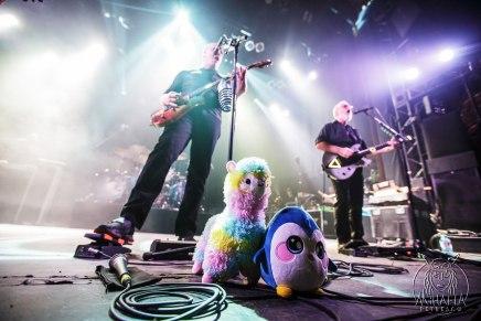 Devin Townsend : Retour sur le concert avec Haken et The Contortionist (26 février2020)